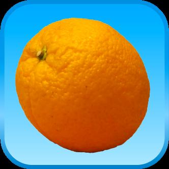 برتقال-شامي