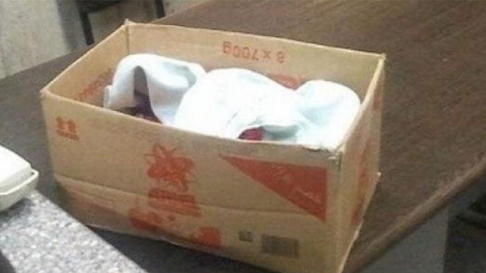 جثث الرضع المتوفين صناديق كرتونية المديرة العامة للصحّة