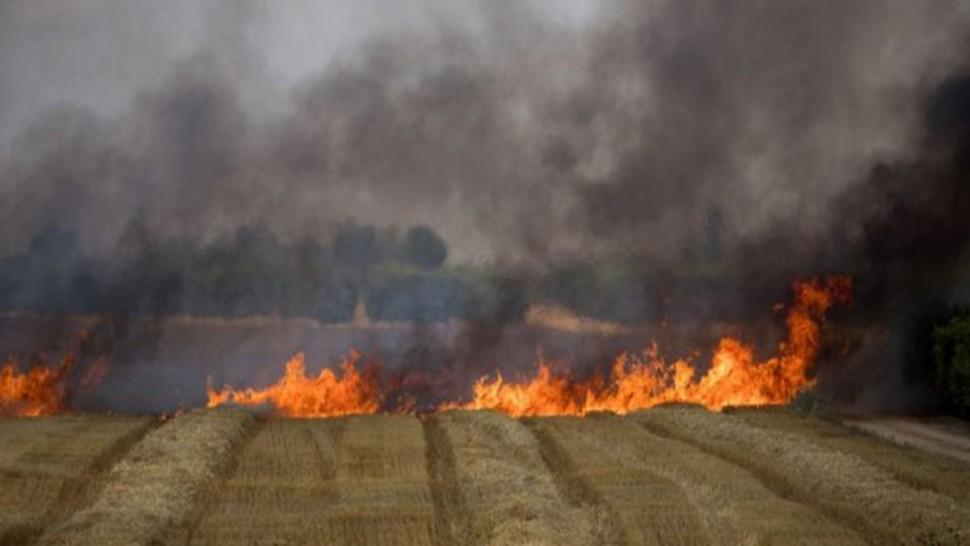 حريق الكاف الحدود التونسية الجزائرية