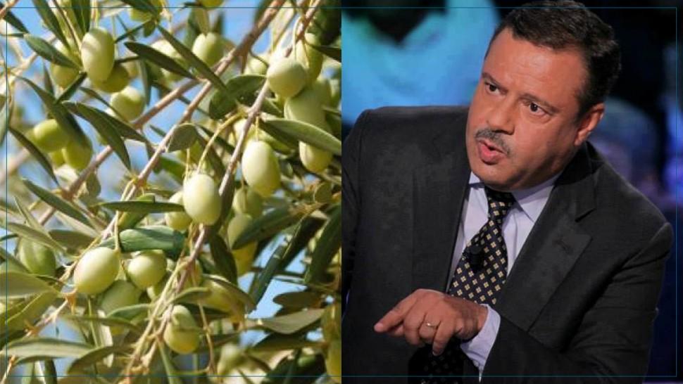 وزير الفلاحة : موسم الزيتون القادم سيكون واعدا