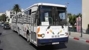 عيد الأضحى شركة النقل صفاقس السجن المدني