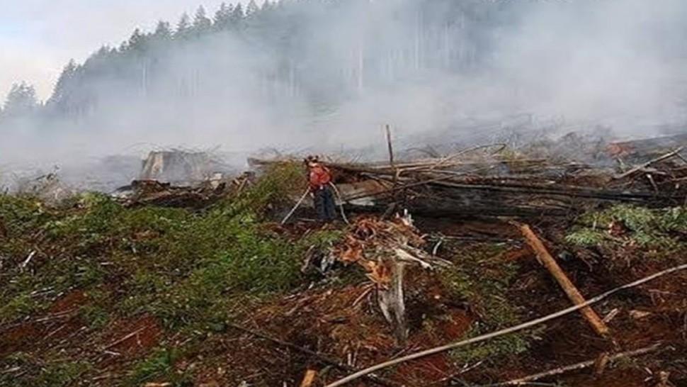 بسبب الحرائق بغابات الأمازون:آلاف البرازيليين يحتجون