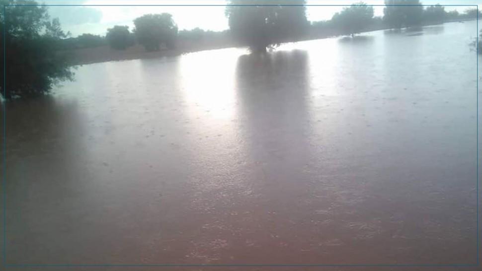 عقارب :أمطار غزيرة بعدد من العمادات الفلاحية (صور)
