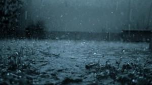 كميات الأمطار المسجلة بعدد من ولايات الجمهورية