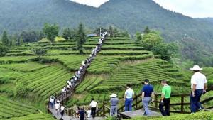مقاطعة هوبي الصينية تعيد فتح أكثر من 60% من مواقعها السياحية