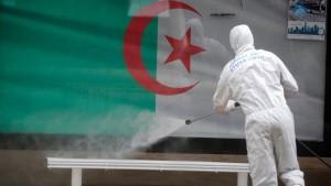 فيروس كورونا الجزائر