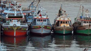 وزارة الفلاحة توضح عملية تزويد مراكب الصيد البحري بالوقود المدعّم