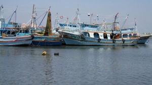 الصيد العشوائي