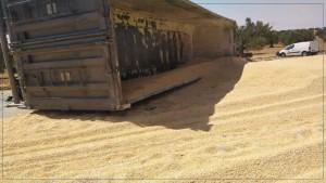 صفاقس : وفاة شخص في اصطدام سيارة بشاحنة ثقيلة