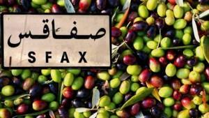 تراجع كميات الزيتون الواردة على سوق قرمدة اليوم