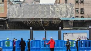 محقّقوا الصحة العالمية يكتشفون وجود  أكثر من 12 سلالة  كورونا في مدينة  ووهان الصينية