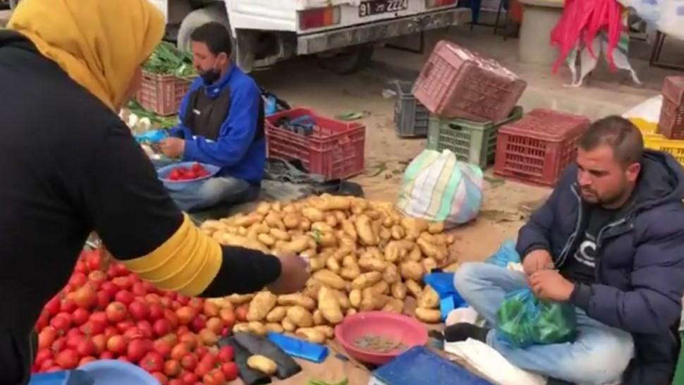 صفاقس: المواطن يتذمّر من ارتفاع أسعار الفلفل والطماطم (فيديو)