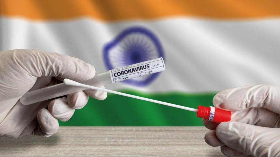 سلالة كوورنا الهندية