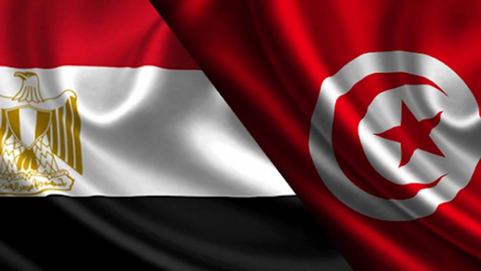 مباحثات مصرية تونسية بخصوص التحرك العربي من أجل إنهاء الهجوم الصهيوني