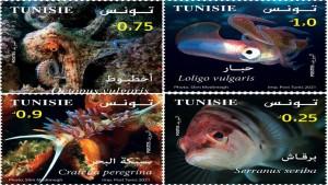 اليوم : البريد التونسي يصدر سلسلة من الطوابع البريدية