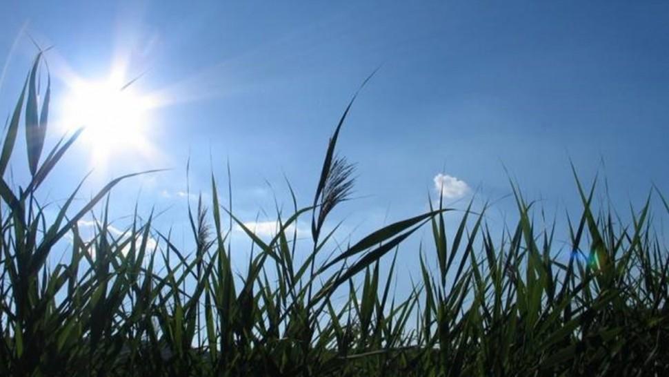 حالة الطقس بصفاقس: سماء صافية والحرارة تصل إلى 31 درجة