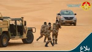 رمادة : حجز 74 بندقية صيد على متن سيارة تهريب