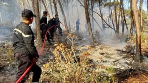جندوبة: طائرة عسكرية تعاضد مجهودات الحماية المدنية للسيطرة على حريق بغابات غارالدماء