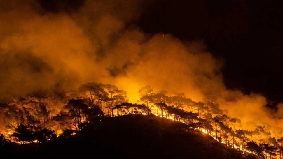 الاتحاد الأوروبي يتحرك لمساعدة تركيا على إخماد الحرائق الأكثر فتكا منذ عقود