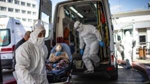 أخصائي في علم الفيروسات : تراجع حدة الموجة الرابعة لكورونا بداية سبتمبر القادم