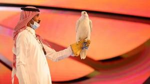 السعودية : بيع صقر بسعر قياسي في مزاد دولي