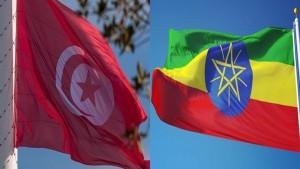 اثيوبيا تحذر من تحرك تونسي داخل مجلس الأمن