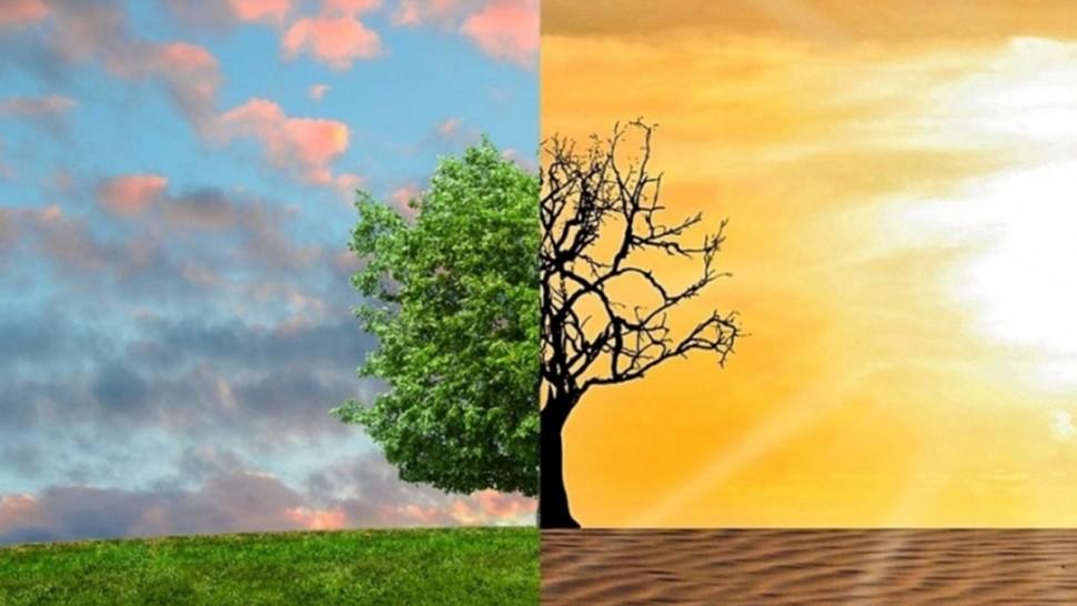 خبير في علم المناخ: تونس من بين البلدان الأكثر هشاشة وعرضة للانعكاسات السلبية للتغيرات المناخية