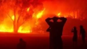 الجزائر : اعتقال 16 شخصا يشتبه في تورطهم في حرائق الغابات