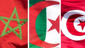 ألمانيا ترفع تونس والمغرب والجزائر من قائمة مناطق الخطورة الوبائية